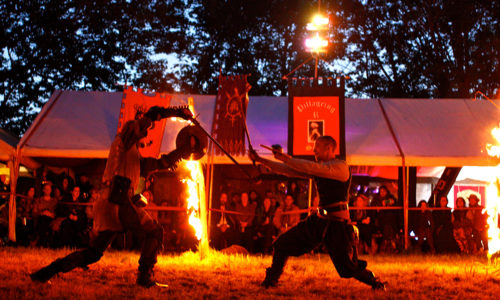 Swordpunk Fire Circle Combat